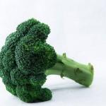 ブロッコリースプラウトのスルフォラファン健康効果とスムージーのレシピ